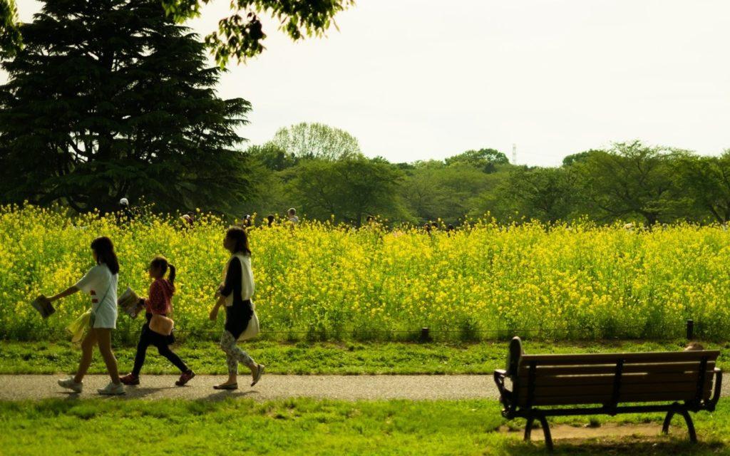 子ども 公園